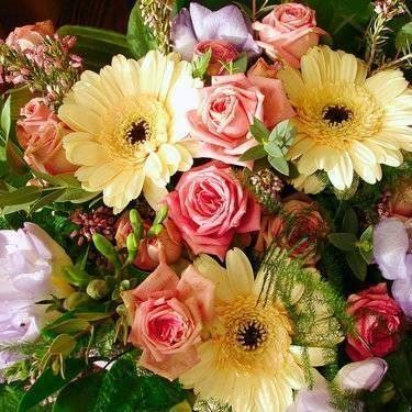 bos bloemen recensie