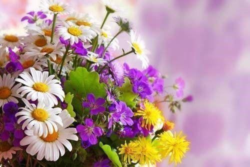 Ervaringen boeket bloemen